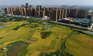 Building in the city of Hefei next to surrounding fields – as China's urbanisation continues at breakneck speed, will its agrarian resources be hit?