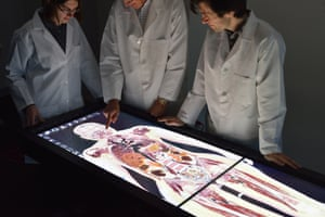 Surgeons consult the touch-sensitive screen on the £45,000 Anatomage system