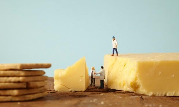 Food: cheese