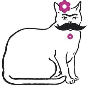 Feminism: cat