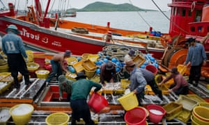 Thai fishing industry
