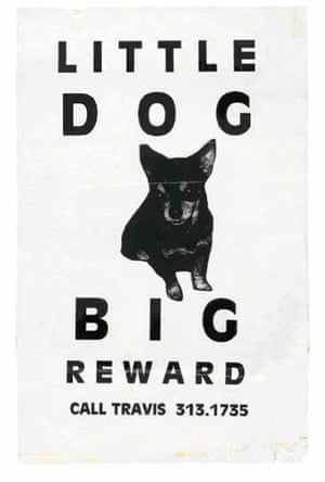 Little Dog Big Reward Lost: Lost and Found Pet Posters from Around the World