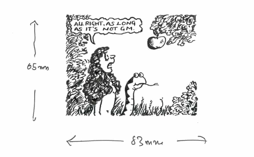 Original artwork for a cartoon on genetically modified foods which was published in the Guardian's letters page on 17 October 2003.