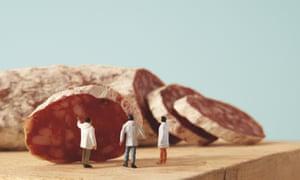 food scientists model