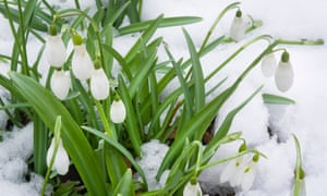 judywhite / Garden Photos.com Address: 211 Log Tavern Drive, Milford, PA, 18337, USA  Contact: info@gardenphotos.com, 570.686.1200, http://gardenphotos.com