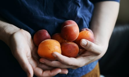 Taste an apricot before you buy.