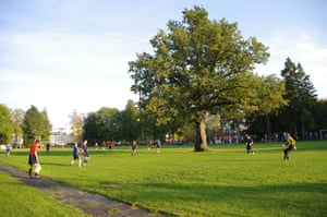European Tree of the Year 2015 Oak tree (Quercus robur)on a football field, Orissaare, Saaremaa, EstoniaIs there a place in the world where you can find a stadium which has an oak tree in the middle of it? For the locals in Orissaare its a common thing, but this tree is at heart of the community. Before 1951 there was a small sporting area beside the oak tree, and when it was expanded the tree ended up in the middle of the stadium. Legend says two of Stalin  s tractors tried to pull it out of the ground, but the cables kept breaking. It still has marks from the cables. Students know how to use the tree to complete passes, and it offers shade to the players. Age: ~150 years