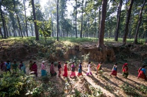 Women go to work in a forest