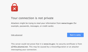 We may read browser security warnings, but why don't we always follow them?