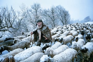 An old shepherd surprised by a snowstorm in Gilan's countryside in the north of Iran