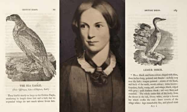 charlotte bronte and pages from Thomas Bewick's history of british birds