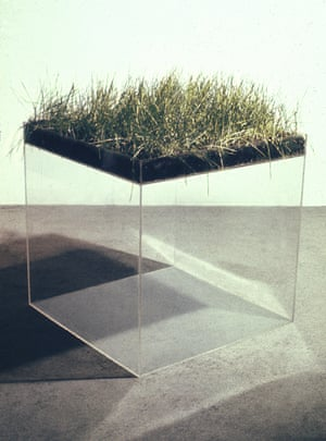 Indifferent Matter exhibiton at the Henry Moore InstituteHans Haacke'Grass Cube'1967Acrylic plastic, earth, fescue grass, water© Hans Haacke / Artist Rights Society(ARS). Courtesy Paula Cooper Gallery, New York