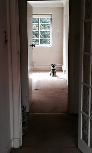 The last visit. After my parents died, we cleared out their flat. It took a while, but finally it was empty, and it was time to leave it for the last time. As I was about to leave, I saw our small dog Kiki, sitting in the exact spot where she used to sit next to my father sitting in his chair during his final years when he was frail and ill. Whenever we visited it would the first place she would go to. Now it was the last.