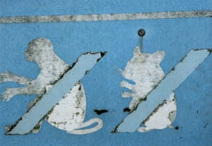 Creature discomforts Sign indicating some of the animals that must not be landed or imported at Lyme Regis, Dorset
