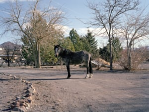 Charlotte Dumas, Wagon Wheel Way II NV 2013.jpg