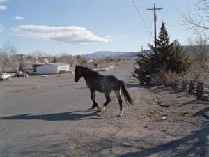 Wagon Wheel Way Stagecoach