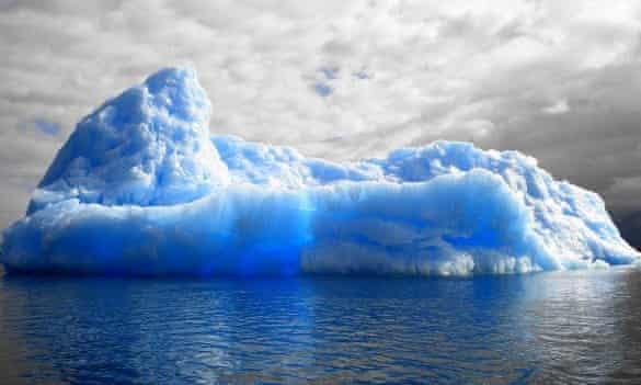 Iceberg plagiarism row
