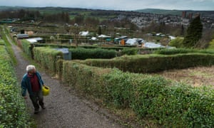 Hagg Lane allotments at Crosspool overlooking Stannington in the Sheffield Hallam constituency.