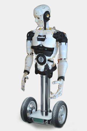 The InMoov robot
