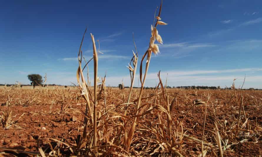 global warming Australia