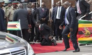 Zimbabwe's president, Robert Mugabe, falls