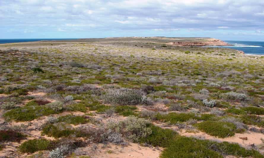 Dorre Island, Western Australia