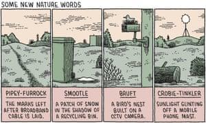 Tom Gauld illustration of nature