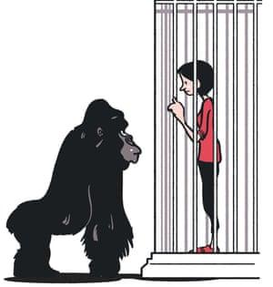 Sophie Heawood: zoo