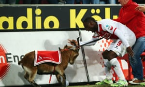 That wasn't the first time that Ujah has celebrated with the mascot after scoring, here they are in November 2014 after Ujah notched against Hertha BSC