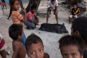 A quiet moment before a pig is slaughtered for a first birthday party in Betio. The young men of the village make the kill while the young watch on with a mixture of anticipation and fear. Occasional pork at feasts provides a rare but valuable meal of red meat in Kiribati.