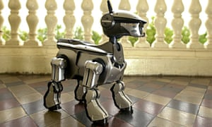 To mourn a robotic dog is to be truly human | Andrew Brown