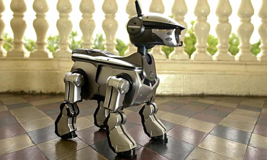 A Sony Aibo robot dog