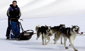 David Cameron drives a dog-sled on his way to the Scott-Turner glacier on the island of Svalbard, Norway, in 2006.