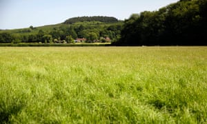 Celtique Energie has dropped plans to explore for shale reserves near Fernhurst in West Sussex.
