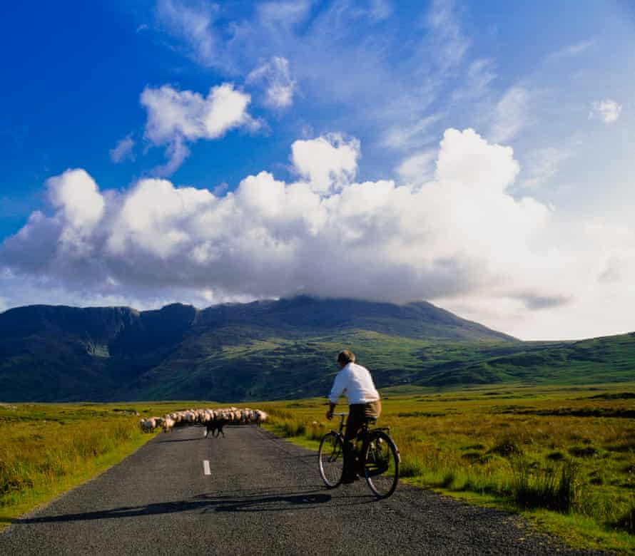 Delphi road with sheep and cyclist