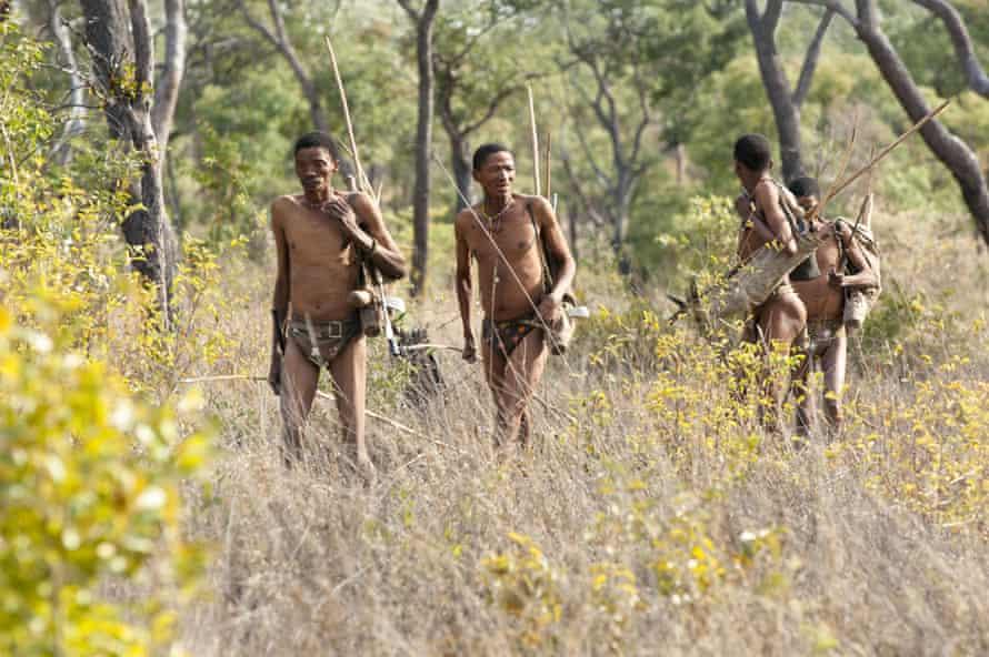 Kalahari !Kung bushman on a hunter-gatherer expedition.