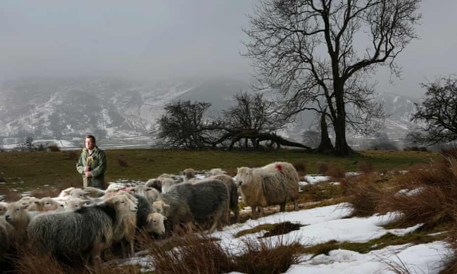 James Rebanks at Racy Ghyll Farm, Penrith, Cumbria