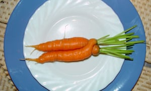 Ugly carrot on a plate