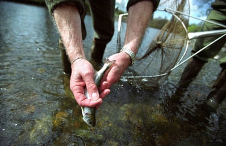 Fishing in the River Taff, Cardiff.