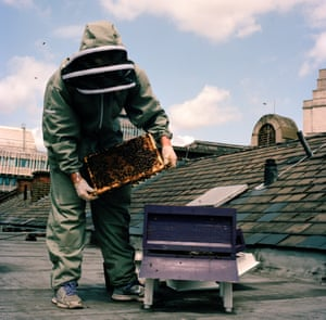 Camilla checking one of her hives on St Ermins Hotel roof top in Westminster, central London.  Bees are thriving in busy cities due to the lower or no pesticide use and the abundant, exotic and diverse range of flowers, trees and plants available to them.  The hives are checked on a regular basis in the summer to make sure the bees are doing well, check for and treat Varroa and other pests/diseases, to add or remove frames/supers depending on how much honey has been produced, to control the swarming impulse and make sure the queens are doing their job.  She will check the hives every 2 weeks from November to February to make sure the bees have enough food and that the queen is laying.