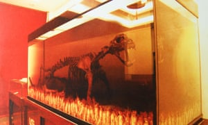 A big cat skeleton – allegedly a tiger – in an aquarium of tiger bone wine.