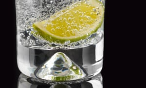 a gin and tonic with a wedge of lemon
