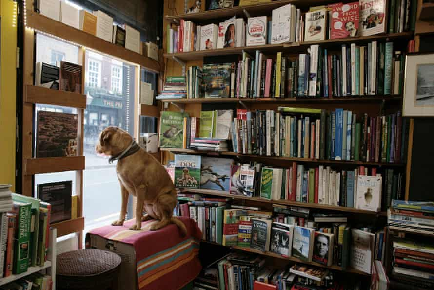 Book Mongers in Brixton, south London.