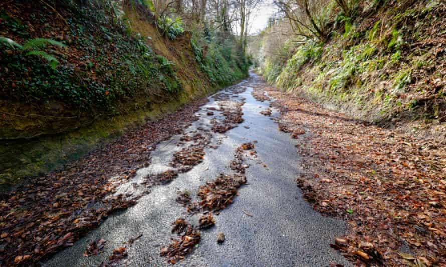 The now-closed C13 road at Dinah's Hollow, Melbury Abbas near Shaftesbury, Dorset.
