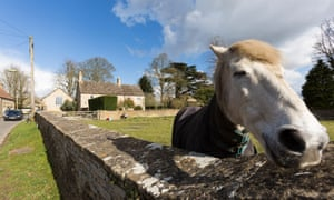 Eiderdown clouds and friendly horses in Chadlington, the village of David Cameron's constituency residence.