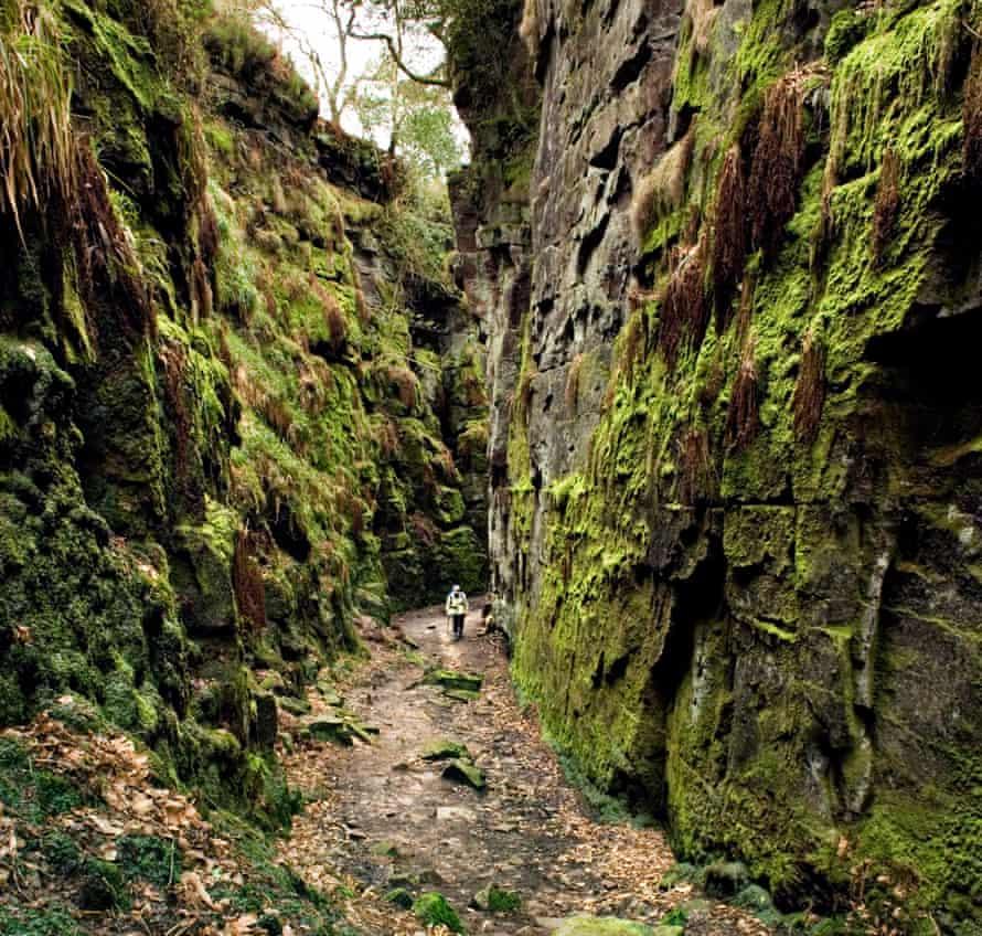 Lud's Church gorge