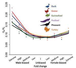 Graph of bird species vs polymorphisms