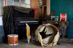 A cat jumps off a piano in the music room of a derelict school