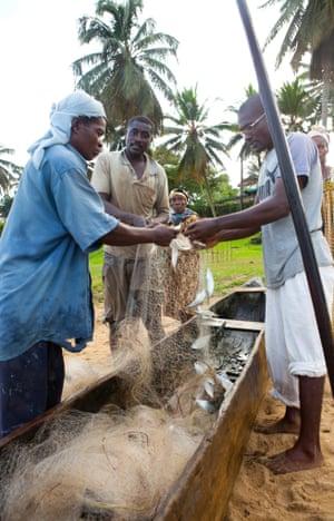 fishermen in Kribi, Cameroon