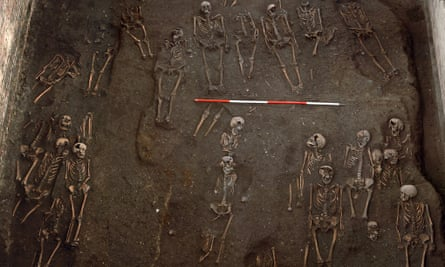 Some of the skeletons uncovered at cemetery below University of Cambridge.